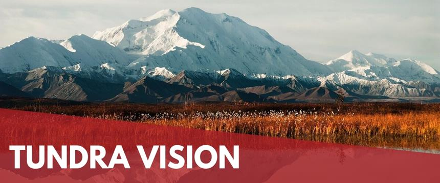 Tundra Vision: Photo of Denali